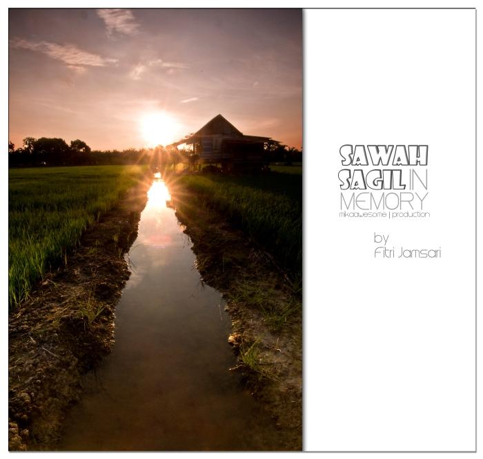 sawah2